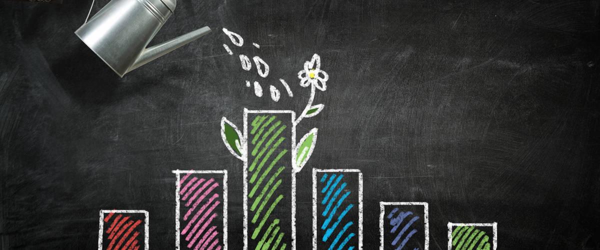 Jenis-jenis Investasi, Berikut Tips Kelola Keuangannya
